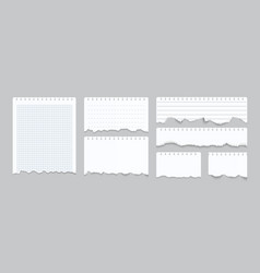 torn notebook papers realistic blank gridded vector image