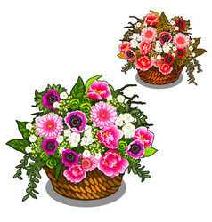 beautiful basket of pink and white flowers vector image