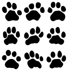 Tiger paw vector