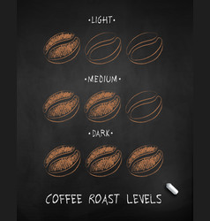 Chalk drawn sketch coffee roast levels vector