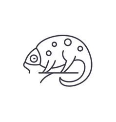 Chameleon line icon concept chameleon vector