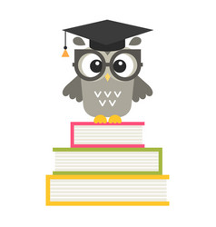 cute owl on the books isolated on white vector image