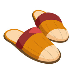 Male slippers home footwear isolated pair for men vector