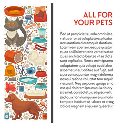 Pet shop cat and dog food and care goods banner vector