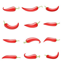 red hot chili pepper cook ingredient raw vegetable vector image