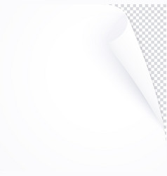 white page with curled corner empty bent paper vector image