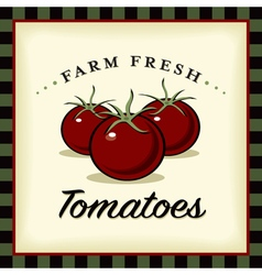 Farm Fresh Tomatoes vector image vector image
