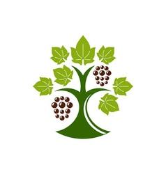Grape-Tree-in-color-380x400 vector image vector image