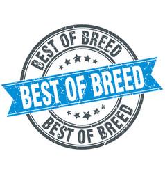 Best of breed round grunge ribbon stamp vector