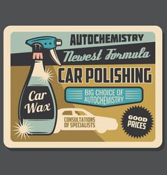Car polishing and auto chemistry service vector