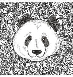 cute bear panda portrait vector image vector image