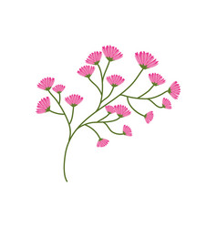 Flourishes branch spring image vector