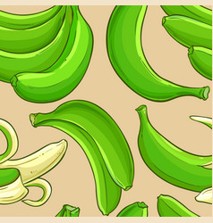 green banana fruit pattern vector image