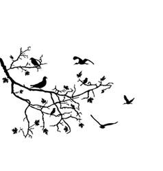 birds on branch vector image