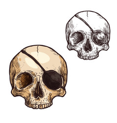 halloween sketch icon skull skeleton vector image vector image