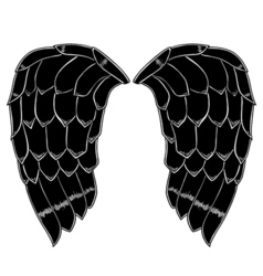 Bird or angel wings vector
