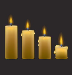 Candles with fire set row vector