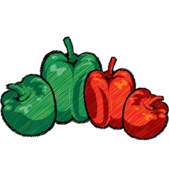 Capsicums vector image