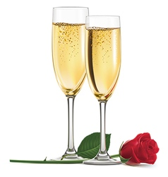 Champagne and rose vector