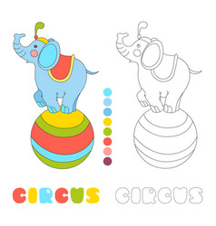 Circus elephant on the big ball i coloring book vector