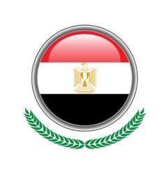 egypt flag button egypt flag icon of egypt flag vector image