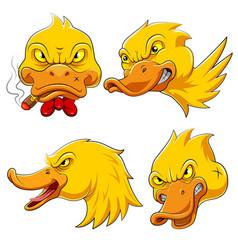 Set collection duck head mascot vector