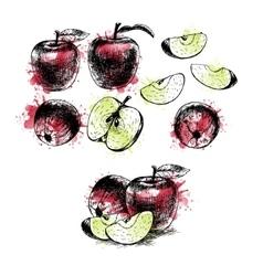 Watercolor hand drawn set of apples sketch vector