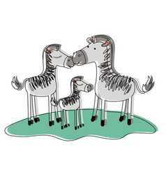 Zebras couple and foal over grass in watercolor vector