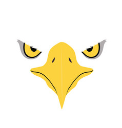 Eagle eyes front face graphic vector