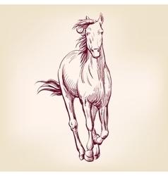 horse hand drawn llustration sketch vector image vector image