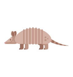 flat style of armadillo vector image vector image