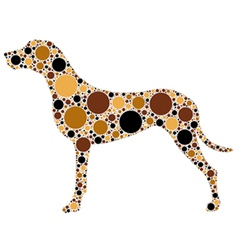 spotted dog vector image