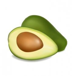 avocado vector image