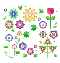 collection flowers buds and leaves vector image