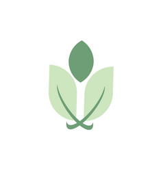 eco leaf business logo vector image