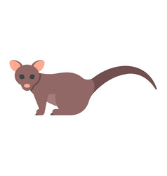 Flat style of brushtail possum vector