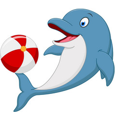 Happy dolphin cartoon playing ball vector