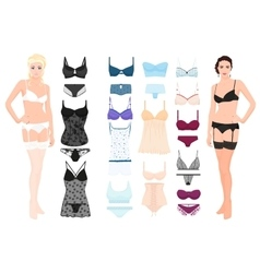 set lingerie elements with beautiful fashion vector image