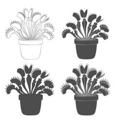 set of black and white images of venus flytrap vector image