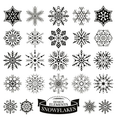 Set of different snowflakes vector
