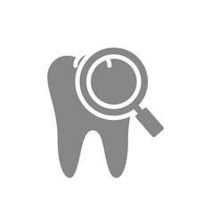tooth with magnifying glass gray icon organ vector image