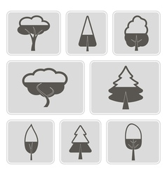monochrome icons with trees vector image vector image
