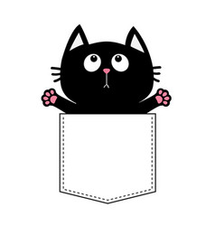 black cat in the pocket ready for a hugging vector image