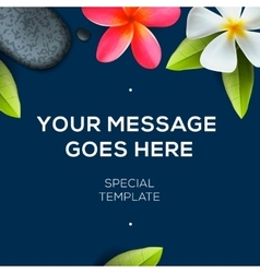 Botanical background with flowers Frangipani vector image