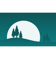 Christmas scenery spruce silhouettes at night vector