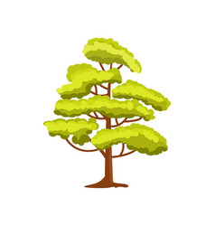 decorative green tree icon vector image