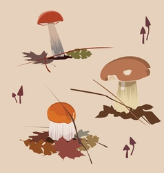 forest mushrooms vector image