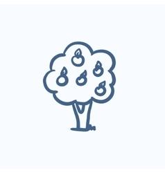 Fruit tree sketch icon vector image