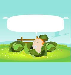 Its a boy newborn bain a cabbage vector