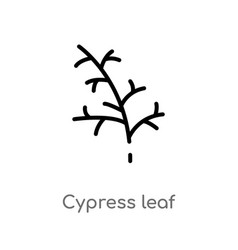 Outline cypress leaf icon isolated black simple vector